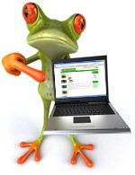 frogcomputer.jpg